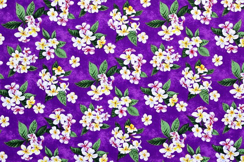 CAA1162 Purple