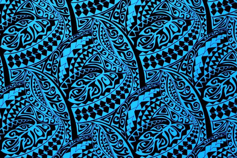 PAC1425 Black/Blue