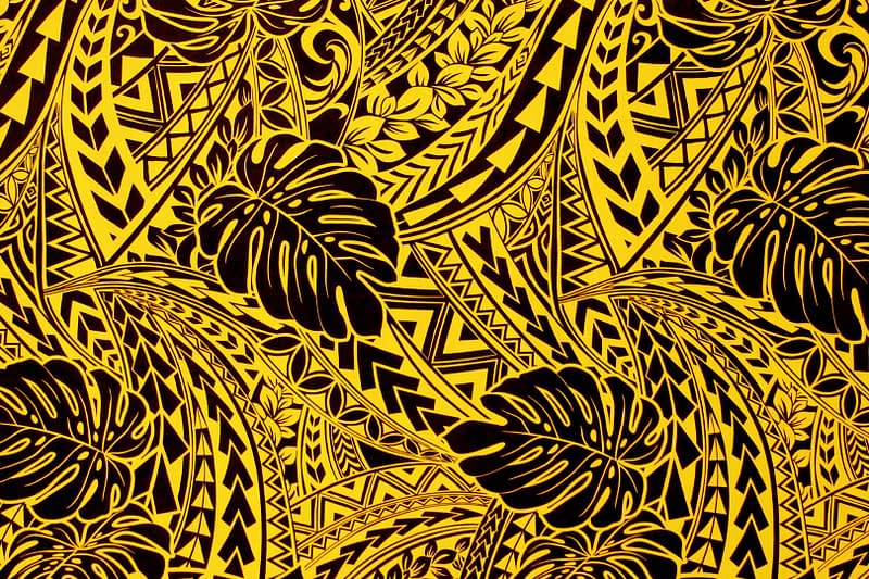 PAC1421 Black/Yellow