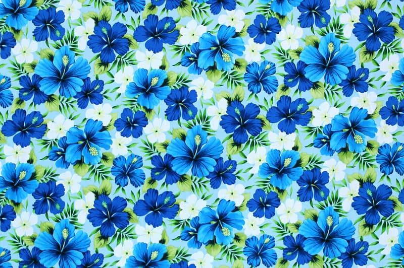 CAA1187 Blue